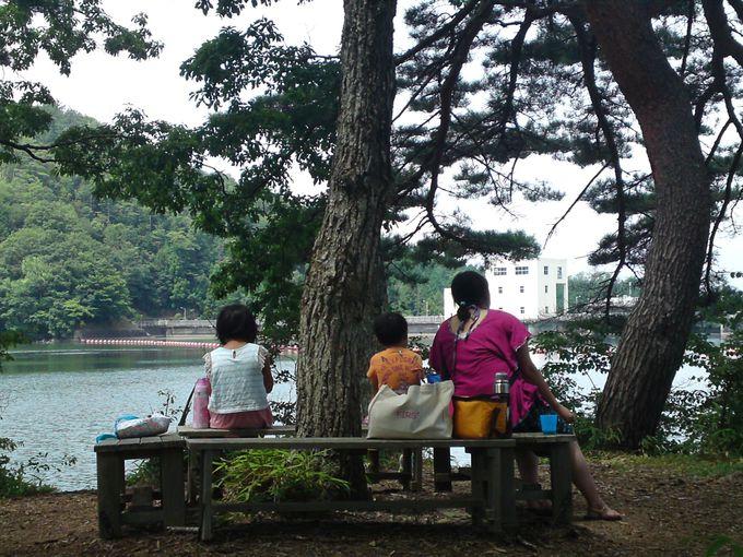 湖の風景を独占できるスポットでの食事は、鳥のさえずりも聞こえ最高!