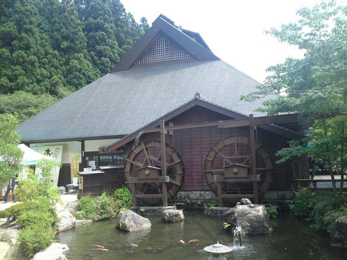 お帰りの際は「香恋の館」や「山遊里」で、イノシシ料理や特製ジェラートをどうぞ♪