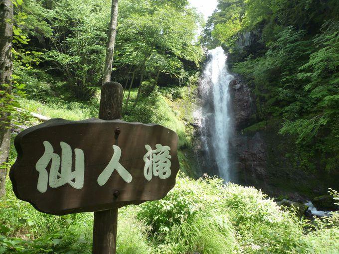 これが「仙人滝」!滝壺周辺は水けむりが立つほどの水量!
