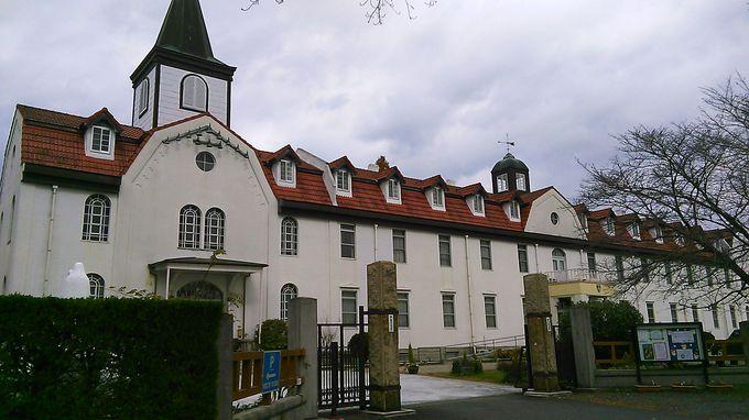 「多治見修道院」は日本で唯一、ワインを醸造しているんです