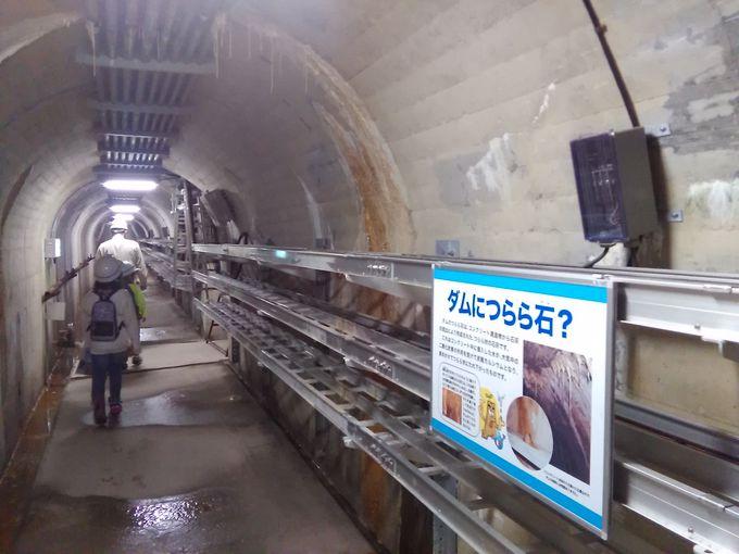 「矢作ダム」の見学は事前予約制 個人でも団体でも見学可能です