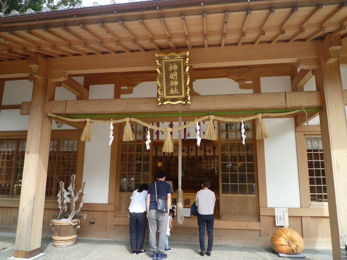 本殿を参拝した後に「石神さん」への願掛けです