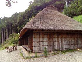 """""""脇町と祖谷峡""""徳島県の2つの歴史ある重伝建地区を巡る旅"""