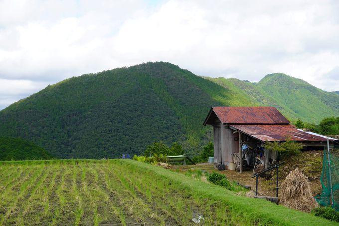 日本の原風景を独占 天空の郷で過ごす至福のひととき