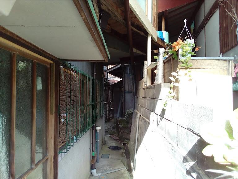 「筋骨」めぐりのハイライト これが昭和の銀座通り