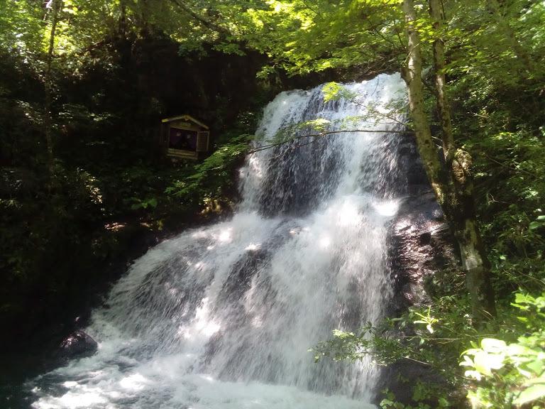 天然のクーラーの涼風と心地よいミストシャワー