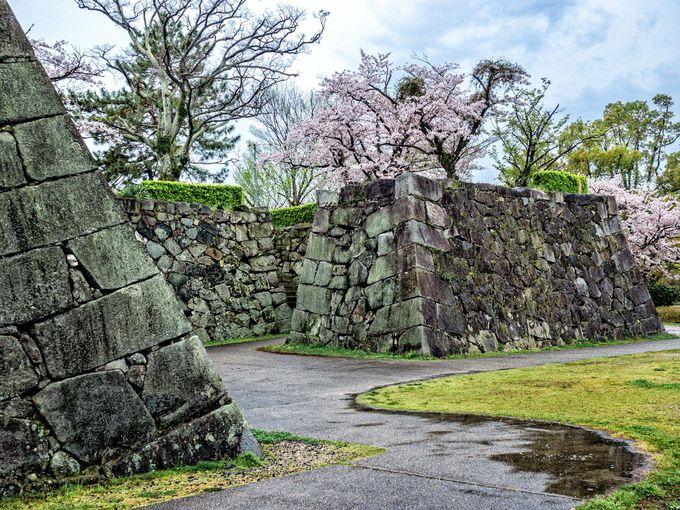 桜の名所として、さらに石垣の美しさに魅せられる名城「佐賀城」