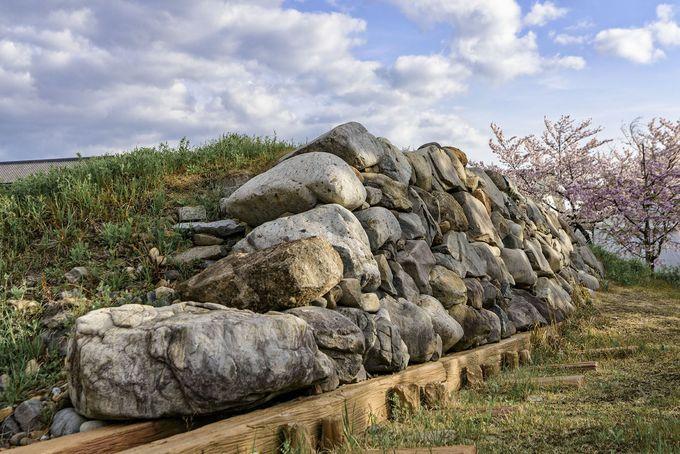 清洲城跡にそびえる天守を仰ぎ見る