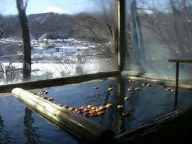 「初恋」の香りのりんご風呂!藤村ゆかりの宿・信州小諸「中棚荘」