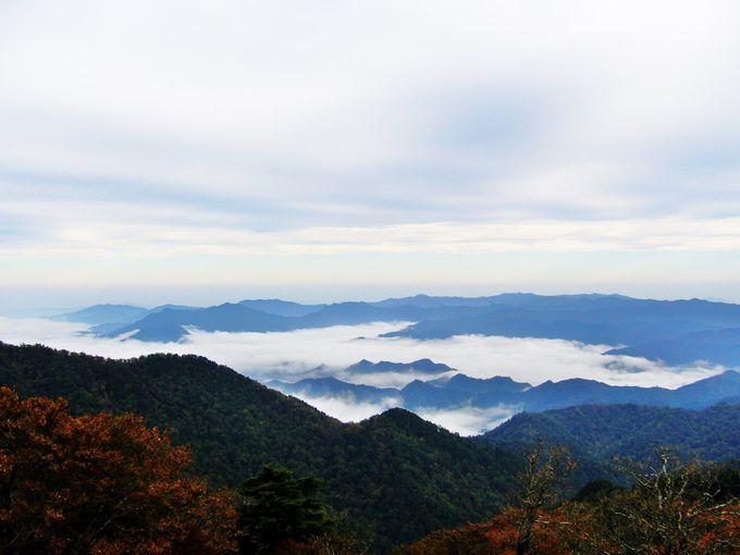 大展望の大台ケ原最高峰「日出ヶ岳」山頂に立つ