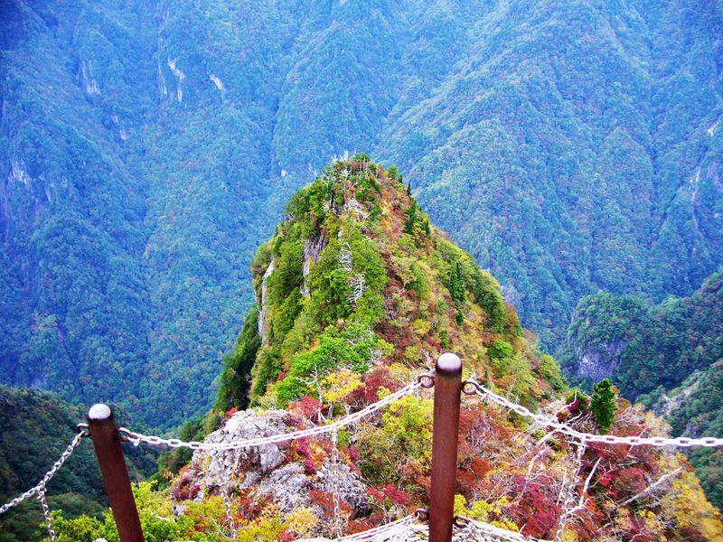 「大蛇�ー」に息を飲む!日本百名山「大台ケ原」東大台コースを歩く