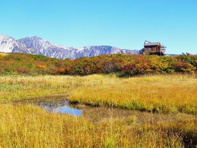 大パノラマの絶景が望めるアルペンクワッドリフトで黒菱平へ