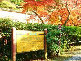 紅葉を愛で、古都奈良の「正暦寺」と「長岳寺」の特別拝観で祈りの心に触れる旅