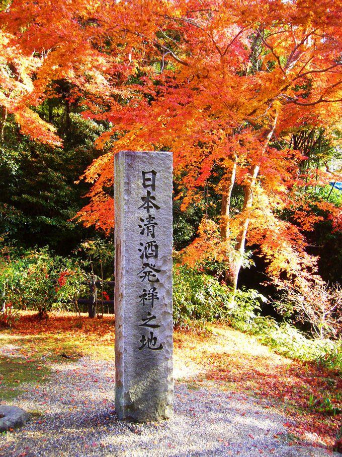 日本清酒発祥の地「正暦寺」のお酒を味わう