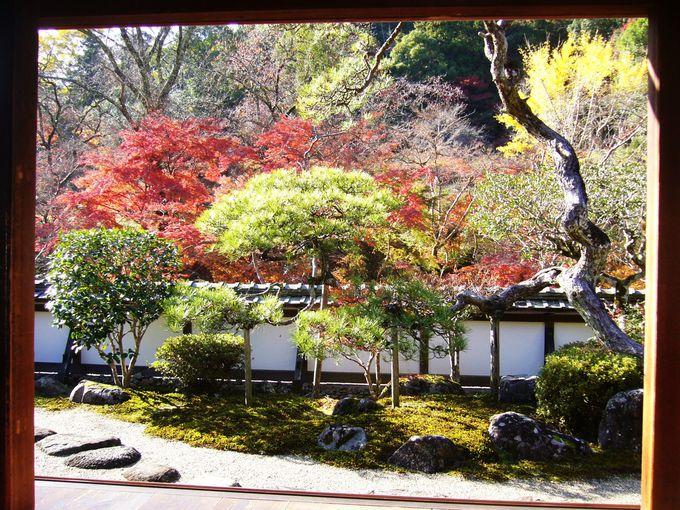 福寿院客殿から秋の絶景を見渡し、仏様に手を合わせる
