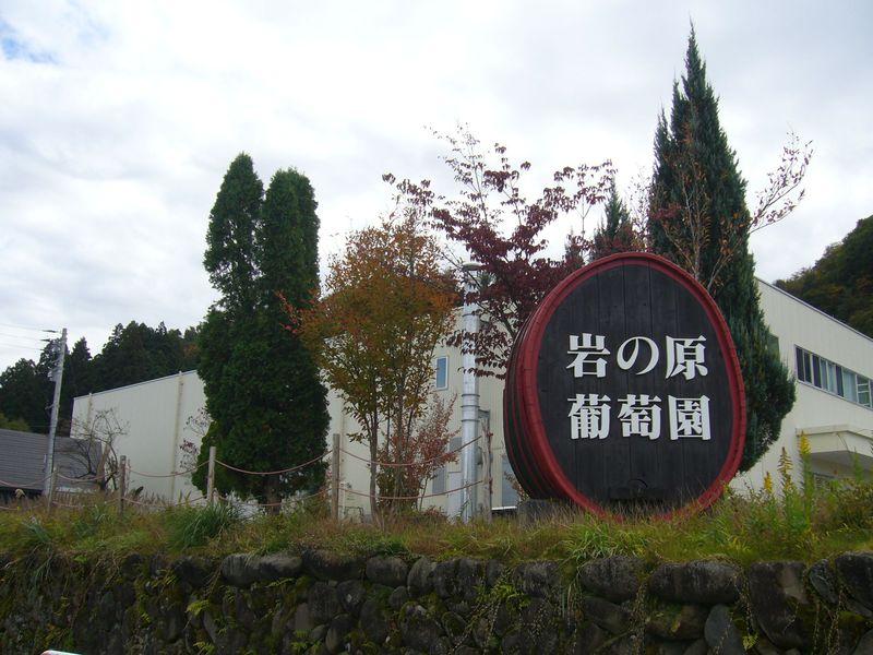 新潟はワインも美味い!上越の老舗ワイナリー「岩の原葡萄園」