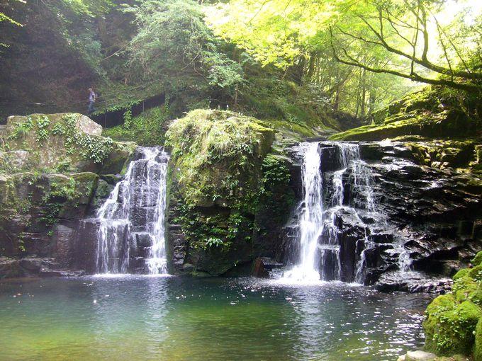 深い森と清らかな水がつくる深山渓谷「赤目四十八滝」