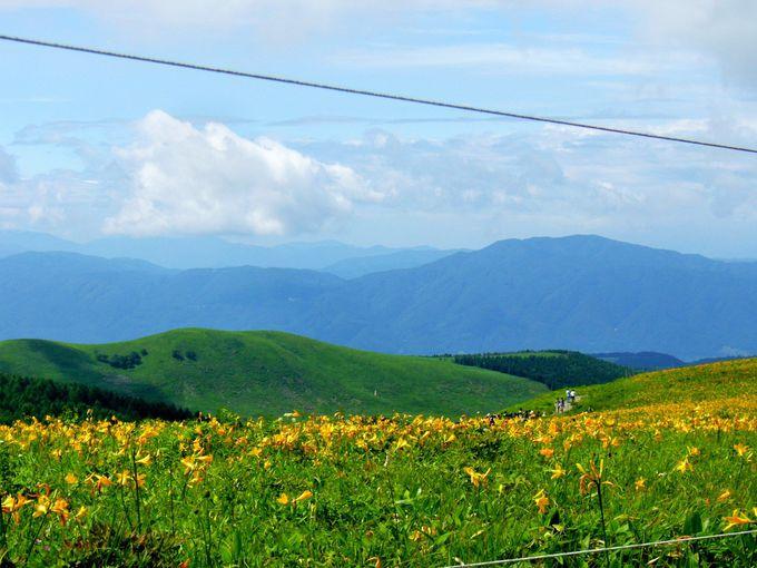 山・高原・空、自然ととけあって季節を感じる「車山」