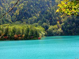 信州・志賀高原で神秘の輝きを見せる大沼池を目指す充実トレッキング