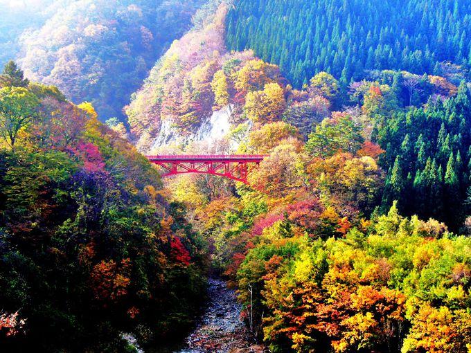 V字渓谷を鮮やかに彩る絵画のような渓谷美