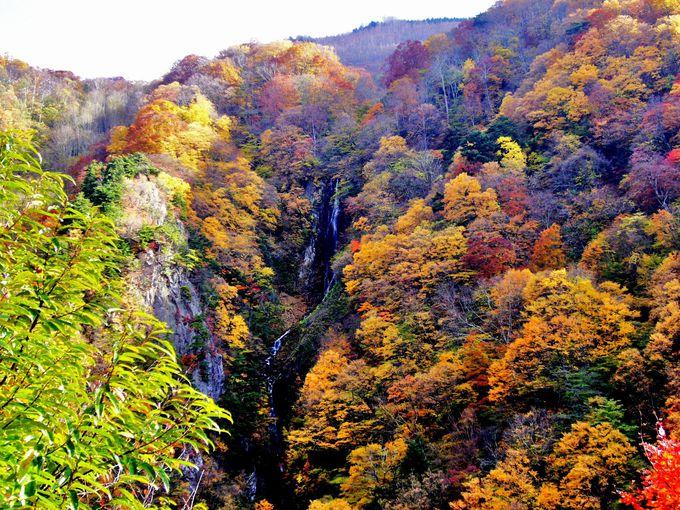展望台からの眺めは飛沫が陽に輝いて美しい「八滝」