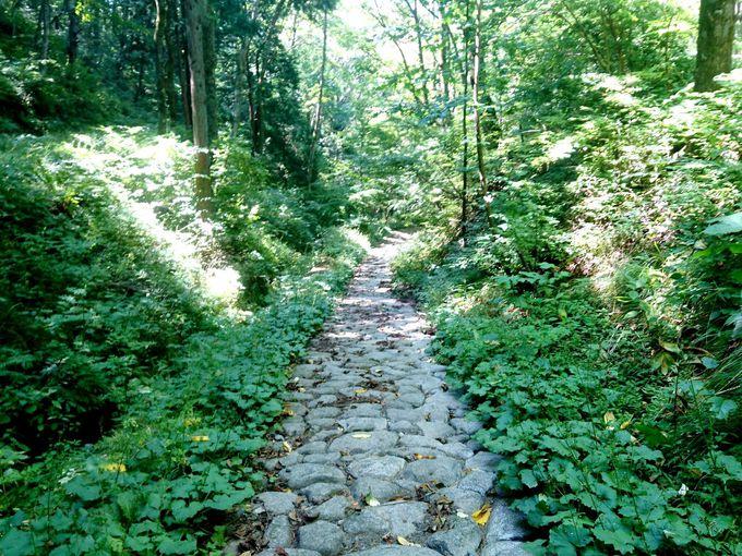 歴史のたたずまいと美しい自然景観・中山道「鳥居峠」