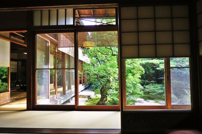 見るだけでも十分価値がある美しい日本庭園に癒される
