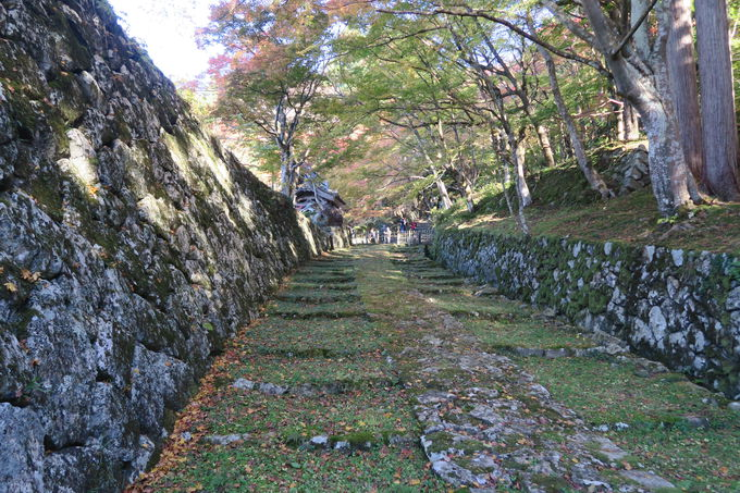 聖徳太子の創建と伝わる湖東三山最古刹「百済寺」