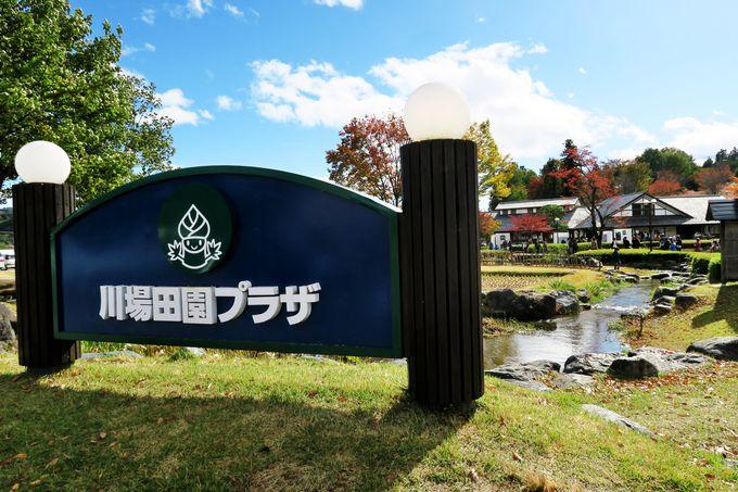 大人気の道の駅「田園プラザ川場」ビール工場と関東名水百選「土田酒造」
