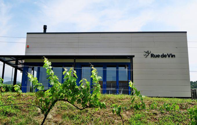 フランスのコート・ドールのような日本の黄金の丘にワイン村を「Rue de Vin(リュードヴァン)」