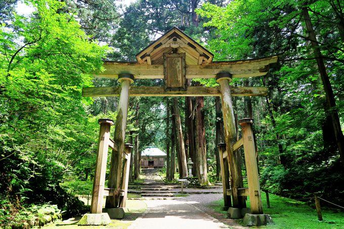 日本有数の巨大な宗教都市が眠る白山平泉寺旧境内