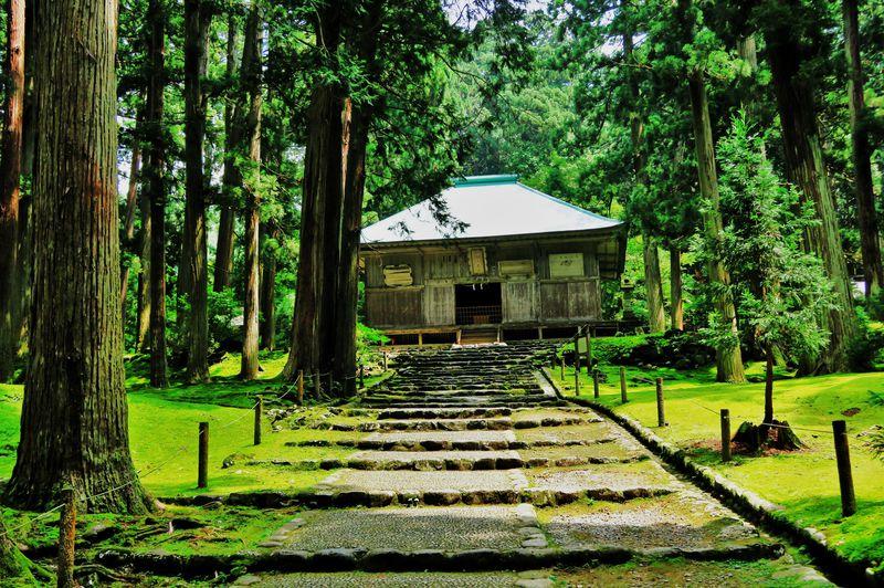 開山1300年の石畳と苔が彩る山岳信仰の聖地・福井「白山平泉寺」
