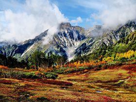 信州白馬「栂池自然園」は驚きの色彩美!白・赤・緑の三段紅葉を堪能