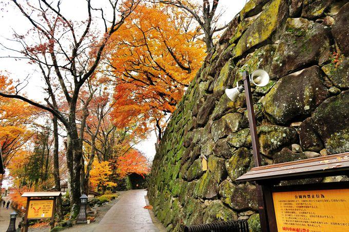 小諸城「三の門」から始まる城址公園「懐古園」