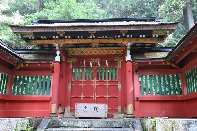 徳川家の栄華を象徴する極彩色が東照宮の証