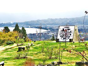 セイズファーム(SAYZ FARM)は富山湾を見下ろす葡萄畑の桃源郷