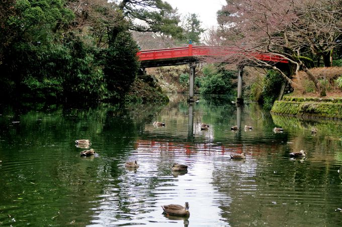 高岡の町づくりの中心「高岡古城公園」