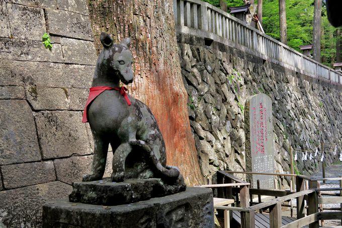 三峯神社参拝のポイントを押えて運気をUP