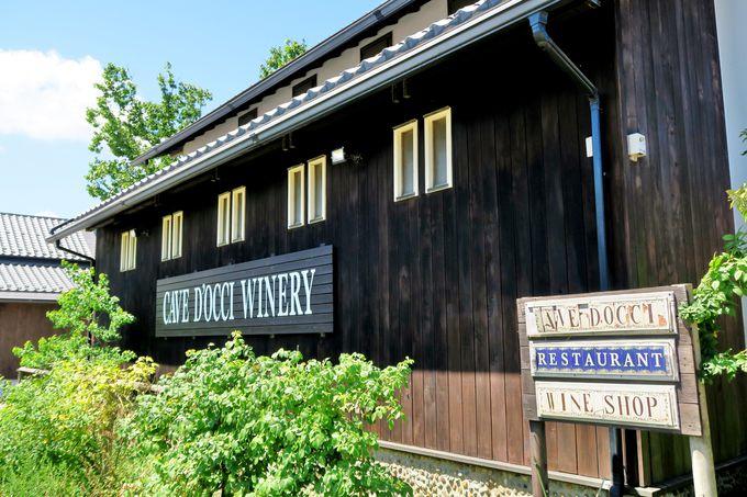 新潟ワインコーストは「カーブドッチワイナリー」から始まった