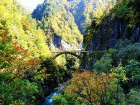 「白山白川郷ホワイトロード」は自然満喫の絶景ドライブロード