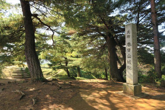 頚城平野・直江津市街・遠く米山まで一望の大パノラマ