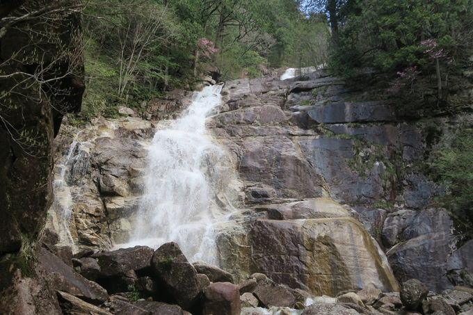 遊歩道沿いに大小十余りの滝が連なる滝ゾーンへ