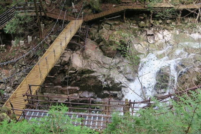小さくても個性的な滝が織りなす水の造形美を堪能