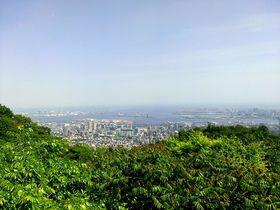 季節を彩る植物と神戸の絶景を楽しめる「神戸布引ハーブ園」