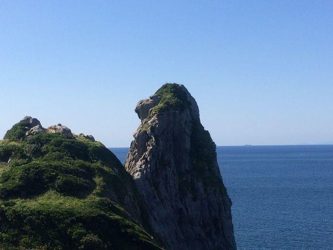 荒波で削られてできた神秘的な「猿岩」もチェック