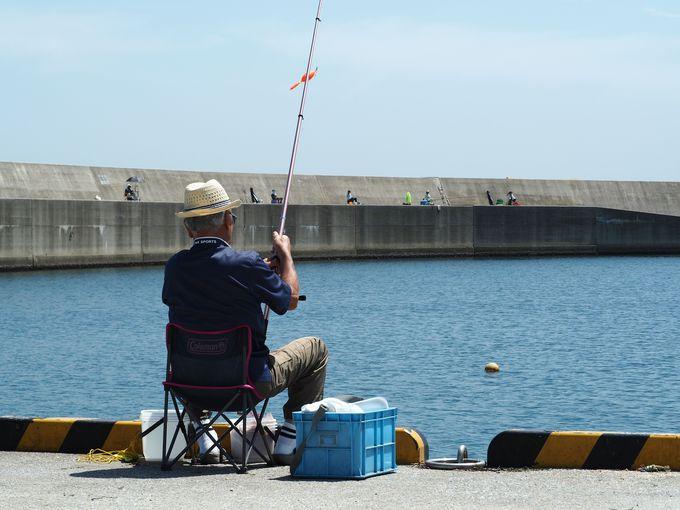 相島の楽しみ方�B釣りを楽しむ