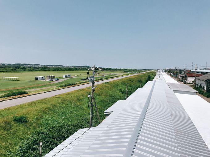 全長545mの長〜い工場でおせんべいができるまでを見学!