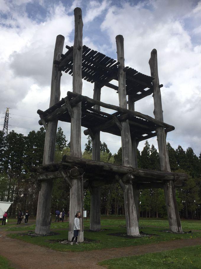午前:三内丸山遺跡と青森県立美術館の見学