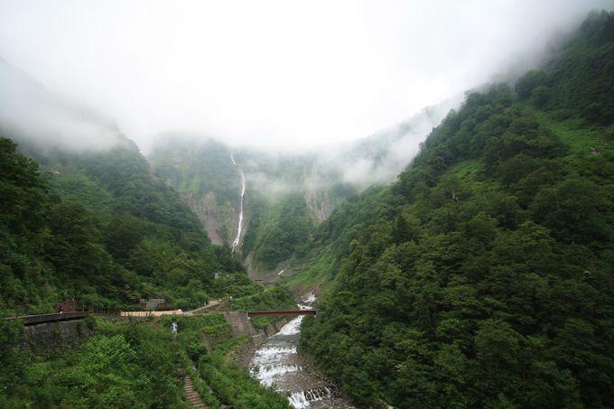 立山の自然も見逃し厳禁