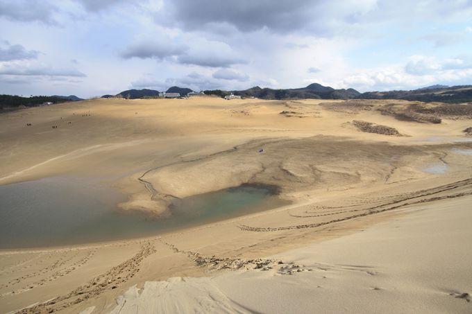 鳥取砂丘は季節によって表情が変わる
